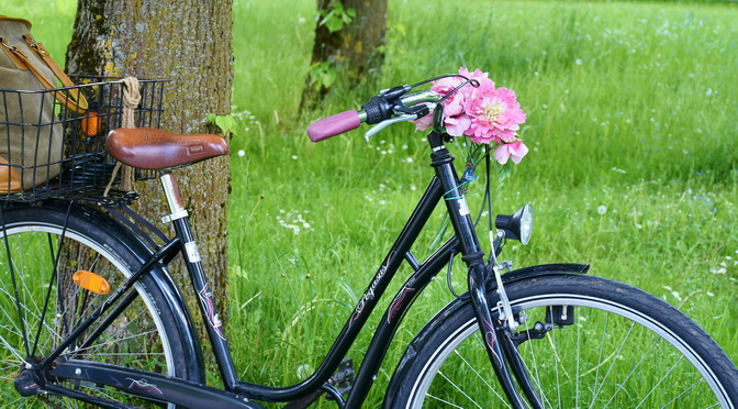 Radltour zu den Augsburger Gemeinschaftsgärten