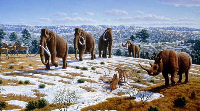 Themenschwerpunkt: Artenvielfalt